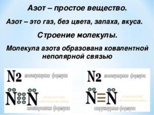 Реферат азот и фосфор 8773
